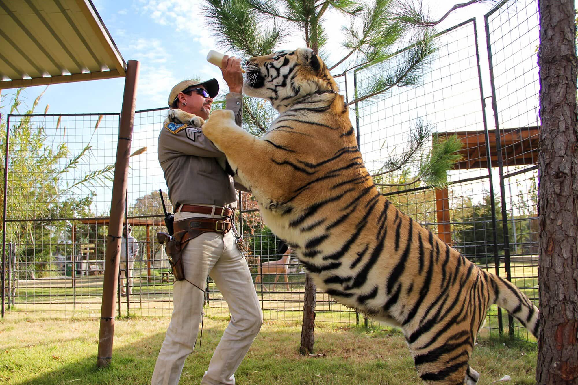 tiger king movie